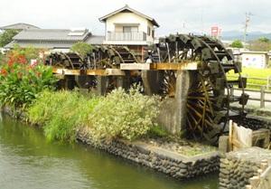 178-20101005chikugo.JPG