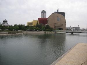 250-20130531murasaki.JPG