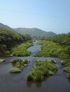 29-20070503shizuoka.jpg
