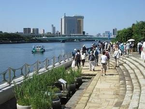 290-20160618sumidagawa.JPG